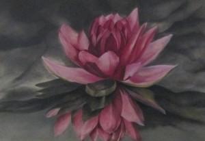 lotus 2 verkleind 1